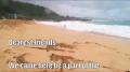 Hawaii Trip 2009