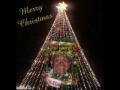 Feliz Navidad-Merry Christmas