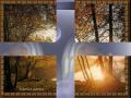 EVANGELIO SEGUN SAN JUAN - 14 de 15 (Cap. 19)