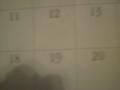 natural habitat calendar