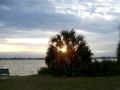 Sarasota Sunsets