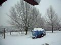 snow in texas 02/14/10