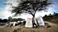 Haiti: Strength Is Found Among The Tents
