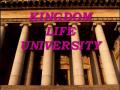 Kingdom Life University