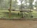2008 Rains