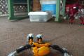 Bionicle dance