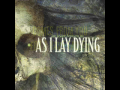 "As I Lay Dying ""Within Destruction"""