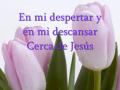 Cerca De Jesus