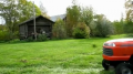 Cute dog mowing lawn