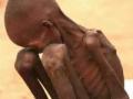 Tampogo Tango Feeding Starving Children