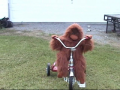 Puppet Ride Bike Test (2010)