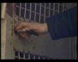 Spiritual Freedom - Prison Ministry, Russia