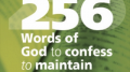 256 WORDS OF GOD TO CONFESS (POWERFULL PRAYERS): The book: Author Allan Rich