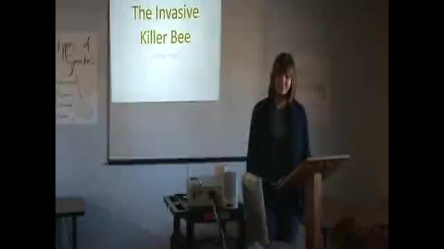 Informative Speech- Killer Bees