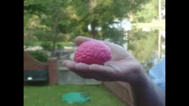 Cornpone Follies 1: Your Brain on Drugs.