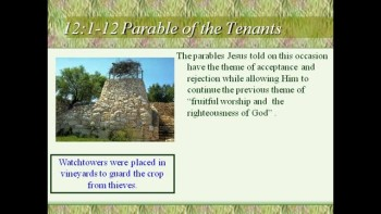 Bible Study - Mk. 12:1-12 The Parable of the Wicked Tenants