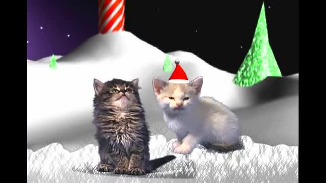 Jingle Cats - Silent Night
