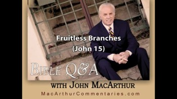 Fruitless Branches (John 15:2, 6)