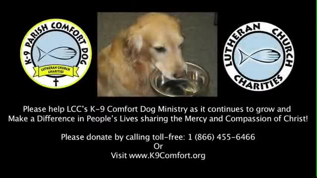 LCC's Comfort Dog Christmas