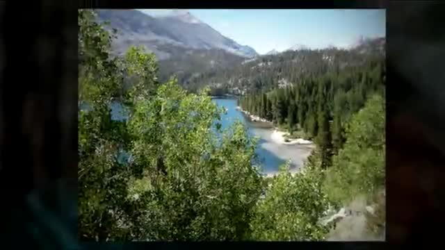 Montana 2010