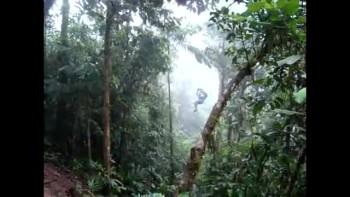 Costa Rica 25-Cruzin
