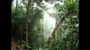 Costa Rica 28-Cruzin