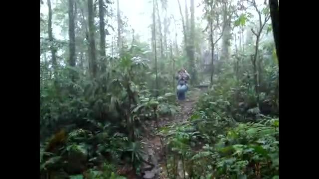 Costa Rica 34-DaBounc