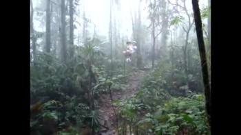 Costa Rica 36-DaBounc
