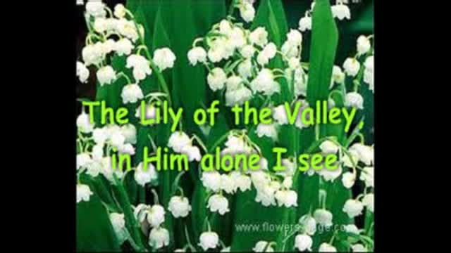 He's The Lily Of The Valley