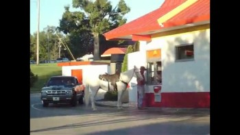 A Man and Horse Going Through McDonald's Drive Through