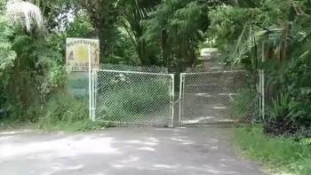 La Cueva del Indio de Las Piedras, Puerto Rico HD+3D - The Cave of the Indian of Las Piedras, Puerto Rico HD+3D