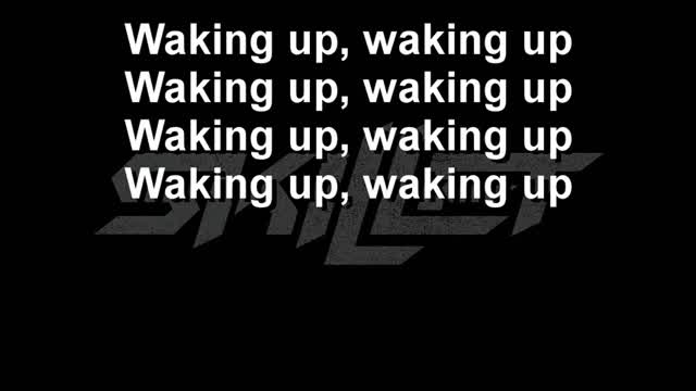 Skillet - Awake And Alive Lyircs