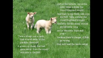4th Sunday of Easter - The Lost Sheep