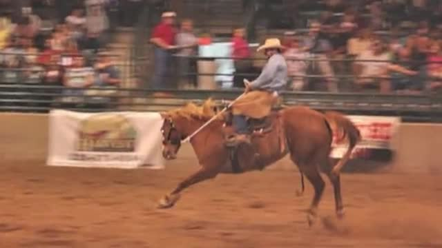 Rodeo Event Wrap Up