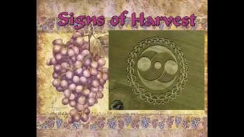 Harvesting - Signs of Resurrection 6