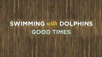 Swimming with Dolphins - Good Times (Slideshow with Lyrics)