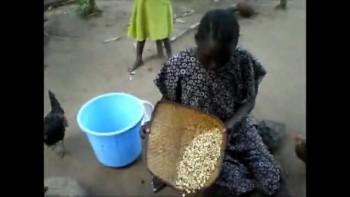 Eating Termites in Sudan