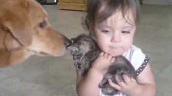 Baby + Kitten = ADORABLE