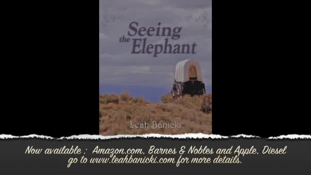 Book Trailer: Seeing the Elephant