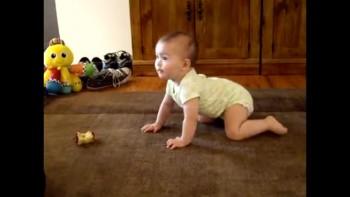 Mayah's first Crawl!