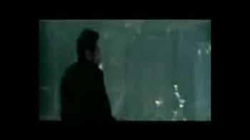Bruce Lee,Jet Li,Tony yaa,Jackie Chan