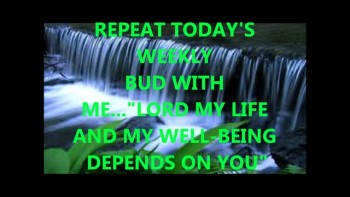 Lord, My Life and Well Being Depends on You! - Weekly Bud 8.15.11