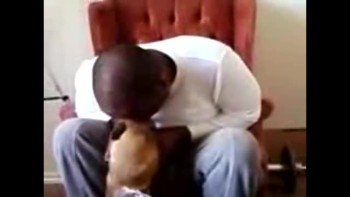 Dog getting a kiss