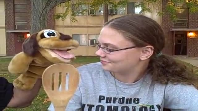 Bad dog and Coolman Visit Purdue