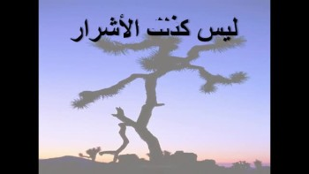 Psalms 1 - Arabic - ا�