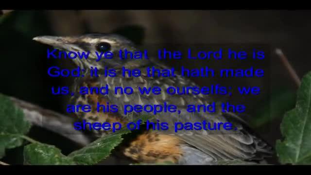 Psalms 100