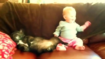 Absolutely Adorable! Baby laughs at snoring dog!