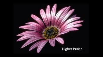 Higher Praise