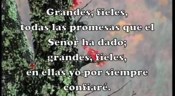 Toda las Promesas