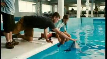 Dolphin Tale – Trailer